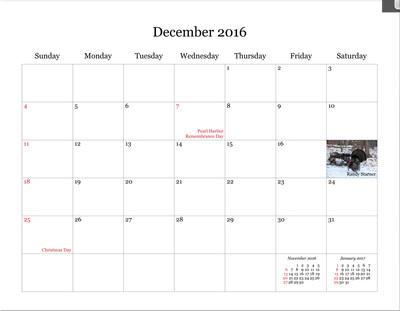 Npc Calendar Sale